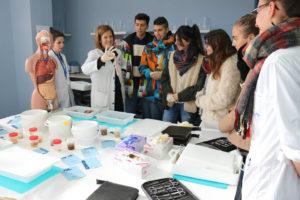 Práctica de anatomía patológica con órganos reales