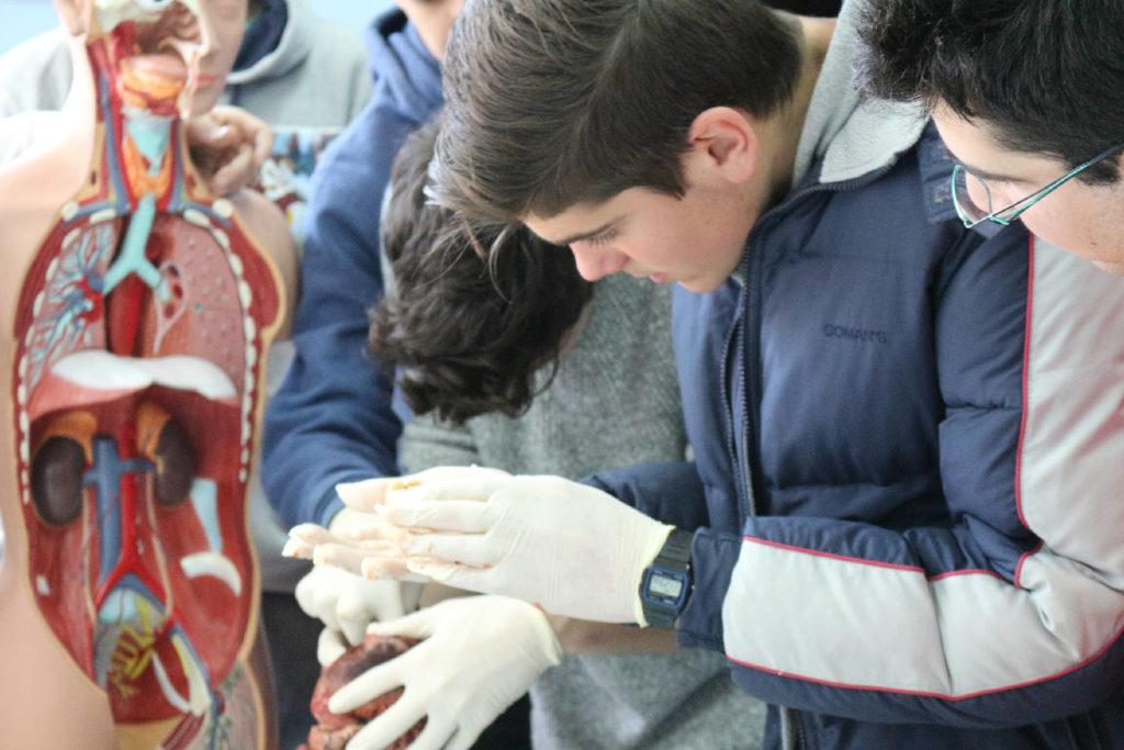Anatomia Patologica y Citodiagnostico-15
