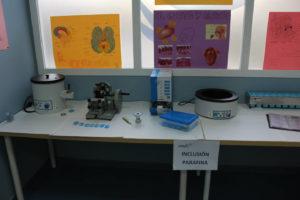 Práctica de anatomía patológica con parafina